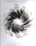 Burst 1, 2010, digital print (dimensions variable)
