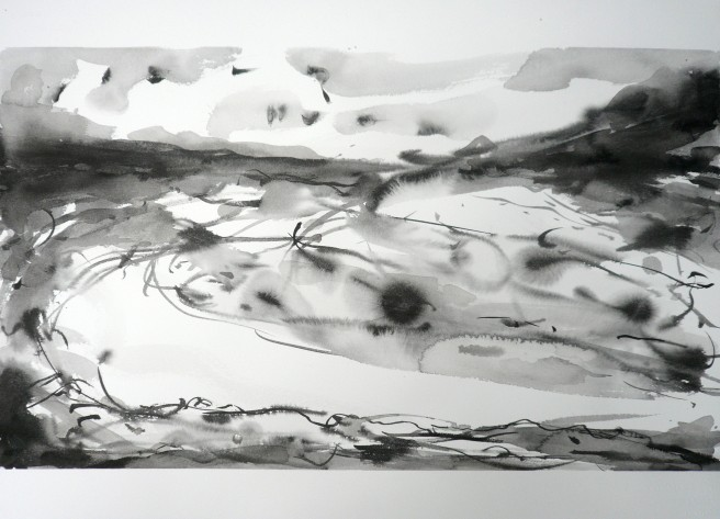 TGP3-01 (2009) Sumi ink on Arches paper. 22 x 30 inches