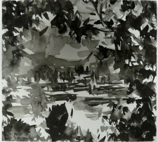 TGP_009 (2008) Sumi ink on paper. 10 x 15 inches (paper size)