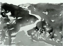 TGP_011 (2008) Sumi ink on paper. 10-1/4 x 14-1/4 inches (paper size)