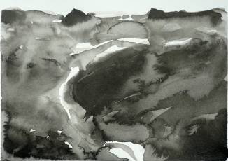 TGP_021 (2008) Sumi ink on paper. 11 x 14 inches (paper size)