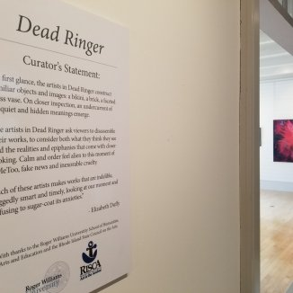 Dead Ringer, install view4-with wall text
